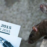 Rats and Tax Return