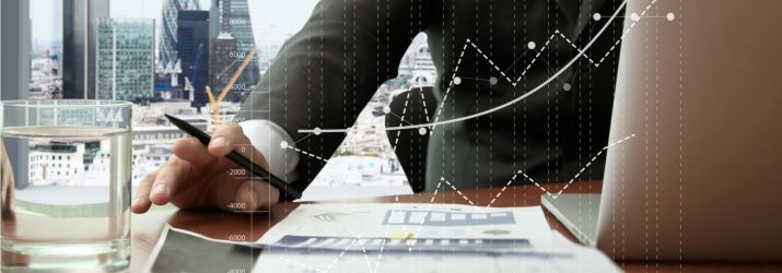 Professional reviewing finances
