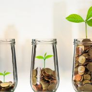 Growing funds jar plant