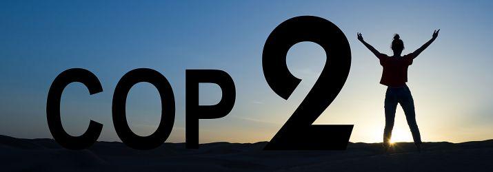 Cop 21 banner image