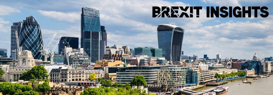 Brexit Insights - London Skyline